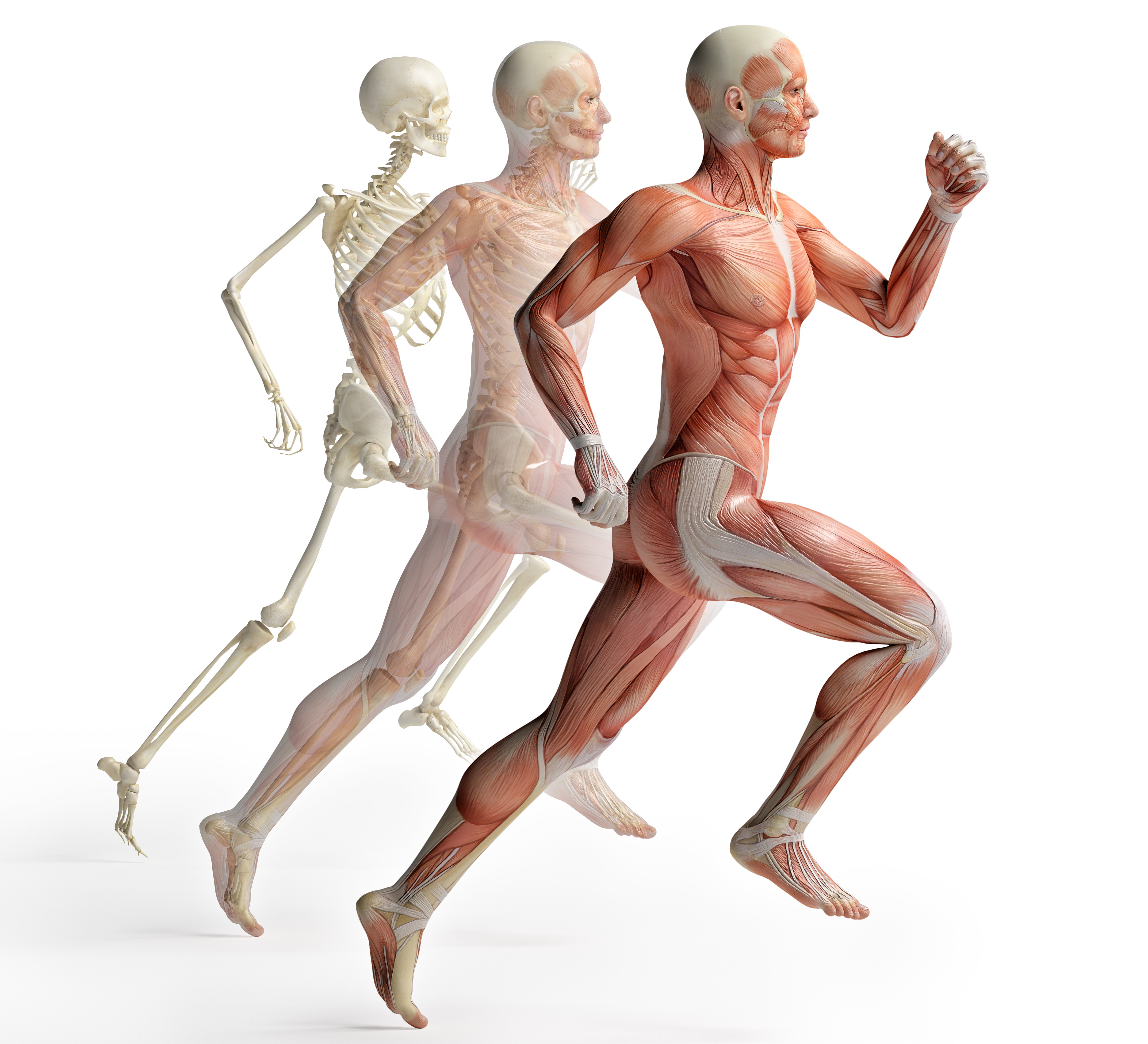 Applied Kinesiology | Peripheral Neuropathy Treatment in Roseville