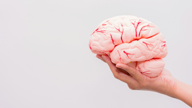Cranial Neuropathy Management